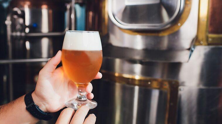cerveja sem alcool