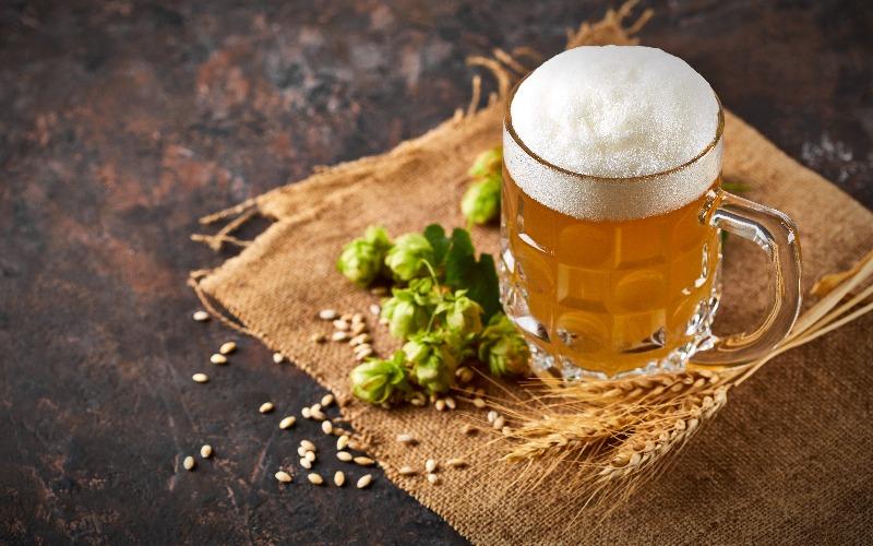 cerveja puro malte
