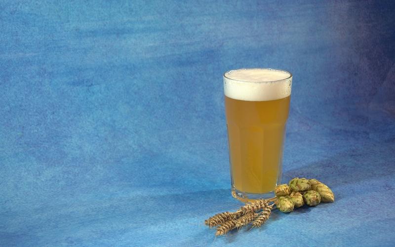 cervejas do amazonas