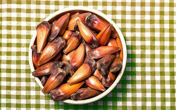 pratos típicos do paraná